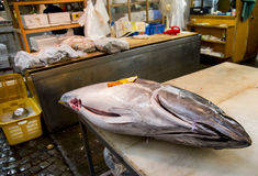 Big tuna on table for cutting. 1 Stock Photography