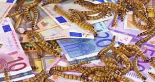 Big ugly worms crawling over euro banknotes background. Economic crisis concept stock video footage