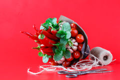 Big unusual bouquet of fresh edible vegetables garlic, green beans, cucumber, radish, bay leaf, pepper, chili pepper, cotton Stock Image