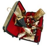 Big valise isolated Royalty Free Stock Photos