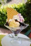 Big vanilla ice, whipped cream, fresh blueberry dessert in glass Stock Photo