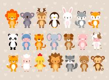 Big vector set with cute animals. Illustration in a cartoon style. vector illustration
