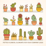 Big vector set linear design, potted flowers. elements of a corporate logo Royalty Free Stock Image
