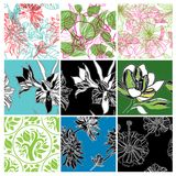 Big vector set of stylish floral backgrounds Stock Photography
