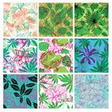 Big vector set of stylish floral backgrounds Royalty Free Stock Photography