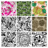 Big vector set of stylish floral backgrounds Stock Photos