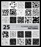 Big vector set of twenty five seamless floral patterns Stock Photo