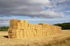 Big wall of straw bales Royalty Free Stock Photos