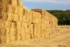 Big wall of straw bales and farmer Royalty Free Stock Images