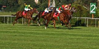 Big Warsaw, winner Anton Turgaev Stock Photos