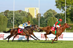 Big Warsaw, winner Anton Turgaev Stock Photography