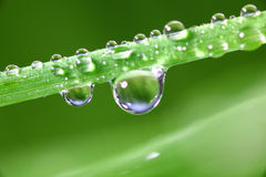 Big water drop Royalty Free Stock Photography
