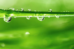 Big water drop Royalty Free Stock Images