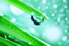 Big water drop Stock Images