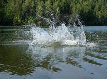 Big water splash in lake. After diving Royalty Free Stock Photos
