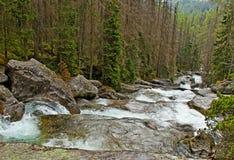 Big waterfall. Stock Image