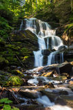 Big waterfall in green forest Stock Images