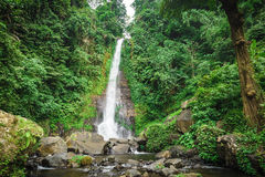 Big waterfall on the island of Bali Royalty Free Stock Images