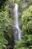 Big waterfall on maui Royalty Free Stock Images