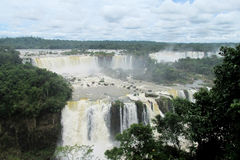 Big waterfalls Iguassu in jungle forest royalty free stock photography