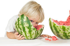 Big watermelon Royalty Free Stock Images