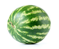 Big watermelon on white background. File contains a path to isolation. Stock Images