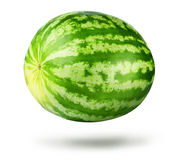 Big watermelon on white background. File contains a path to isolation. Stock Image