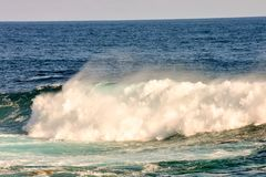 BIg Wave in the Ocean Royalty Free Stock Image