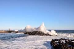 BIg Wave in the Ocean Royalty Free Stock Photography