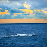 Big wave over colorful sunset Royalty Free Stock Photography