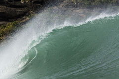 Big Wave, Piha Stock Images
