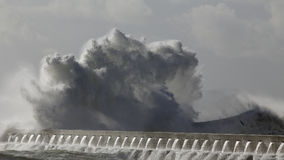 Big wave splash. Big stormy sea wave splash Royalty Free Stock Photography