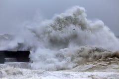 Big wave splash Stock Photography