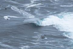 Big wave surfer stock images