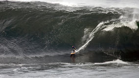 Big Wave Surfer Stock Photography