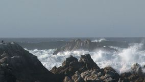 Big wave Westcoast, California, United States stock footage