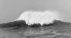 Big  waves on cloudy day. Stock Photo