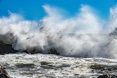 Coastal Sea Storm tempest big wave Royalty Free Stock Photography
