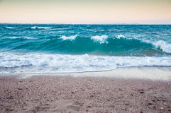 Big waves on the seacoast of the red sea. Stock Image