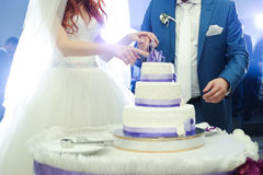 Big wedding cake. Groom with bride cut Royalty Free Stock Photography