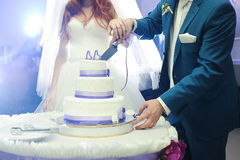 Big wedding cake. Groom with bride cut Royalty Free Stock Photo