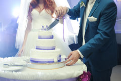 Big wedding cake. Groom with bride cut Royalty Free Stock Photos