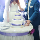 Big wedding cake. Groom with bride cut Stock Photo