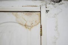 Big wet spots and black mold on the wall of the domestic house room after heavy rain and lot of water. Big wet spots and cracks and black mold on the wall of the stock photography