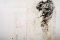 Big wet spots and black mold on the wall of the domestic house room after heavy rain and lot of water royalty free stock photos