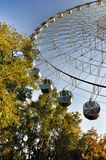 Largest Ferris wheel in the shadow of green trees in Krasnodar park Royalty Free Stock Photos