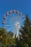 Big wheel in the park outdoor amusement attraction Stock Photos