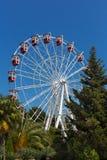 Big wheel in the park outdoor amusement attraction Stock Photos