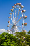 Big wheel in the park Turia in Valencia, Spain Stock Images
