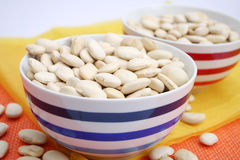 Big white beans Royalty Free Stock Image
